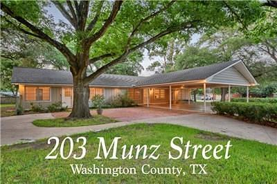 Washington County Single Family Home For Sale: 203 Munz Street