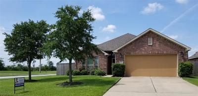 Pearland Single Family Home For Sale: 2700 Secret Falls Court