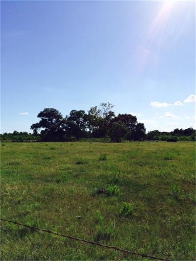 Tomball Farm & Ranch For Sale: 1409 Winfrey Lane