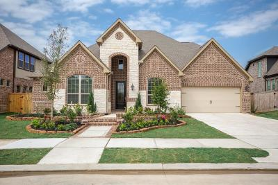 Galveston County, Harris County Single Family Home For Sale: 16215 Folk Festival Drive