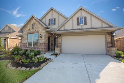 Rosharon Single Family Home For Sale: 4949 Spring Terrace Lane