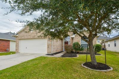 Richmond Single Family Home For Sale: 7307 Sabinal Creek Drive