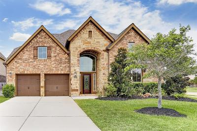 Fort Bend County Single Family Home For Sale: 3618 Winding Point Lane