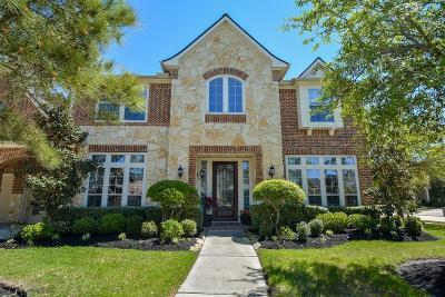 Katy Single Family Home For Sale: 9902 Terrance Springs Lane