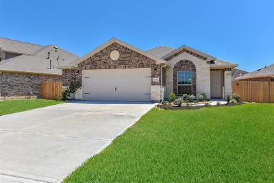 League City Single Family Home For Sale: 3059 Camelia View Lane