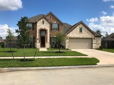 Tomball Single Family Home For Sale: 17910 Rushing Hollow Court