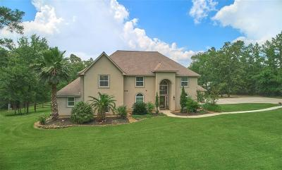 Magnolia Single Family Home For Sale: 38122 Wind Song Trace