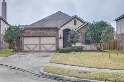 Tomball Single Family Home For Sale: 22315 Hillington Court