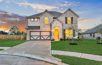 Pearland Single Family Home For Sale: 3232 Parker Drive