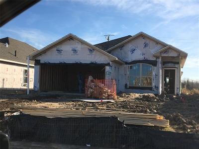 Texas City Single Family Home For Sale: 8729 Explorer Drive