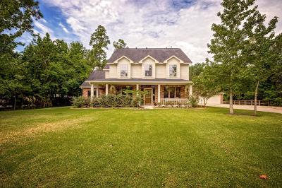 Huffman Single Family Home For Sale: 318 High Point Crossing Drive