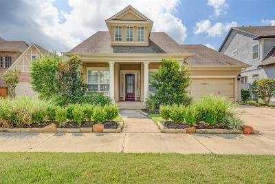 Spring Single Family Home For Sale: 62 W Sawyer Ridge Drive W