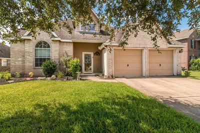 League City Single Family Home For Sale: 2504 Sandvalley Way