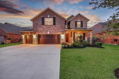 Houston Single Family Home For Sale: 1916 Pleasant Springs Lane