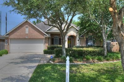 League City Single Family Home For Sale: 874 Shoal Pointe Lane