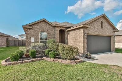 Porter Single Family Home For Sale: 22501 Toronado Ridge Lane
