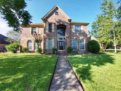 Friendswood Single Family Home For Sale: 607 Fernwood Drive Drive