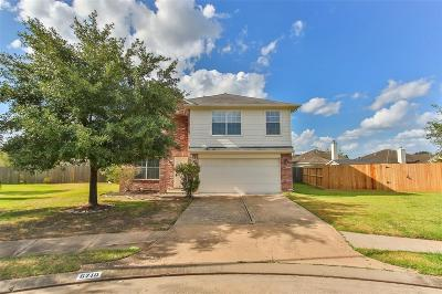 Katy Single Family Home For Sale: 6710 Ruthin Court