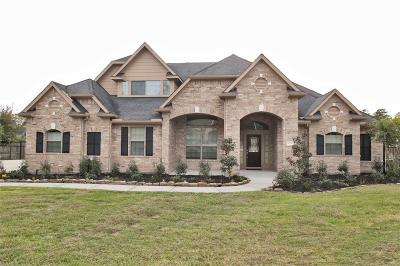 Conroe Single Family Home For Sale: 13232 Autumn Ash Drive