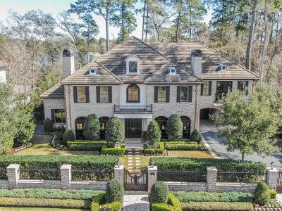 The Woodlands Single Family Home For Sale: 74 S Badger Lodge Circle