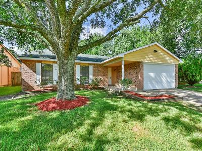 Single Family Home For Sale: 4851 Court Road