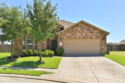 Katy Single Family Home For Sale: 3230 Balch Springs Lane