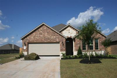 Katy Single Family Home For Sale: 3835 Kellys Falls