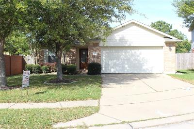 Pearland Single Family Home For Sale: 2806 Morning Bay Drive
