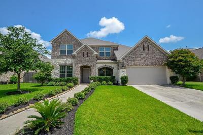 Missouri City Single Family Home For Sale: 6919 Brewster Lane