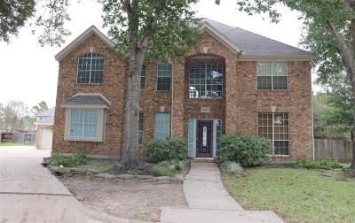 Katy Single Family Home For Sale: 2402 Amber Springs Drive