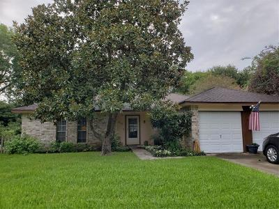 Friendswood Single Family Home For Sale: 16123 Tibet Road