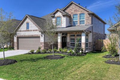 Porter Single Family Home For Sale: 21667 Lexor Drive