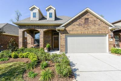 Tomball Single Family Home For Sale: 98 Wood Drake Place