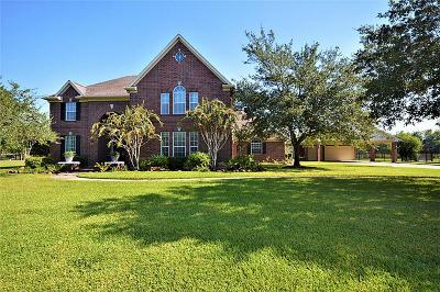 Pearland Single Family Home For Sale: 1613 Pine Crest