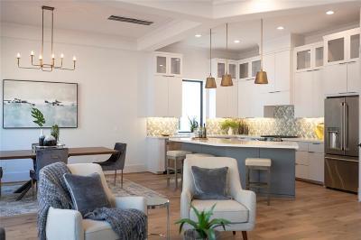 Houston Single Family Home For Sale: 1733 Moritz Drive #B