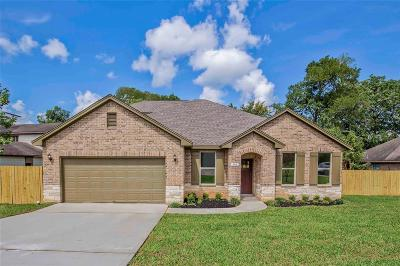 Montgomery Single Family Home For Sale: 205 Kings Point Street