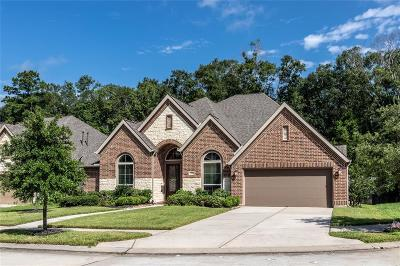 New Caney Single Family Home For Sale: 23306 Colleton Drive