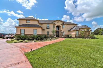 Rosharon Single Family Home For Sale: 17950 Shiloh Ridge Drive