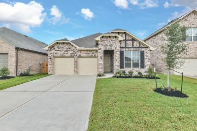 Single Family Home For Sale: 29512 Samara Drive