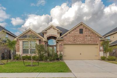 Missouri City Single Family Home For Sale: 3906 Catania Bay Court