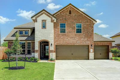 Pearland Single Family Home For Sale: 3695 Hughes Court