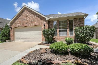Pearland Single Family Home For Sale: 2412 Alamanni Drive
