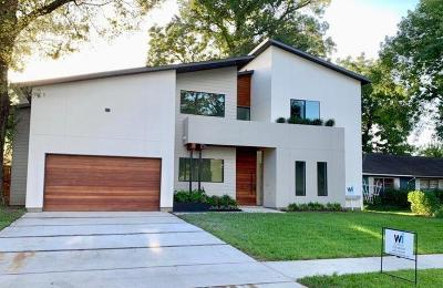 Houston Single Family Home For Sale: 1601 Ronson Road