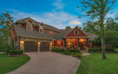 Single Family Home For Sale: 20117 Hilltop Ranch Drive