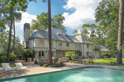 Houston Single Family Home For Sale: 506 Thamer Lane