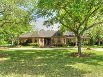 Friendswood Single Family Home For Sale: 405 Allan Street