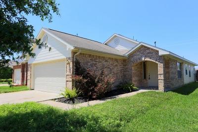 Houston Single Family Home For Sale: 811 Royal George Lane