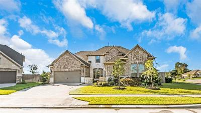 Friendswood Single Family Home For Sale: 2500 Cedar Path Court