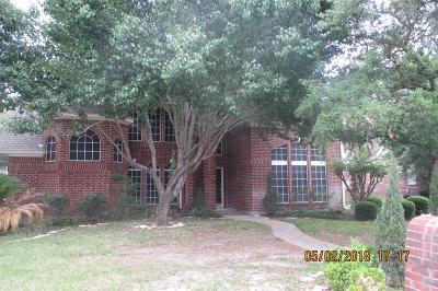 Spring Single Family Home For Sale: 6226 Laver Love Dr Drive
