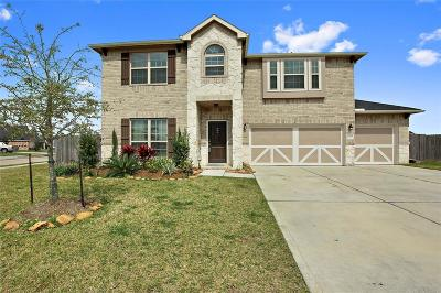 League City Single Family Home For Sale: 1519 Nacogdoches Valley Dr Drive